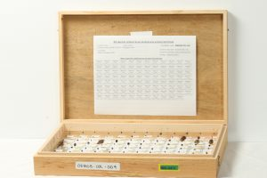 Schmidt insect box with pinned insects and an array map